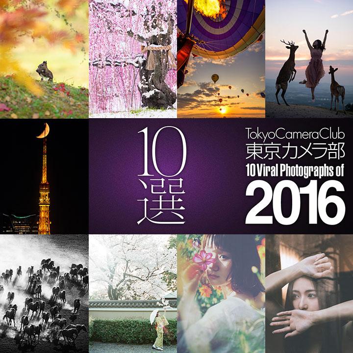 The Top 10 Viral Moments Of 2016: 東京カメラ部 10選 2016 スペシャルページ